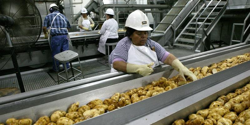 McCain Foods USA Announces Expansion of Burley, Idaho