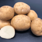 Alliston potato variety