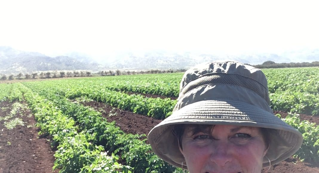 Deb Hart in a Hawaiin potato field
