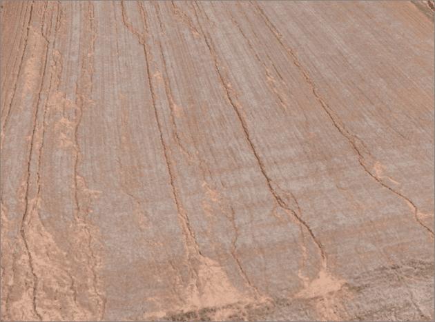 Bean stubble erosion