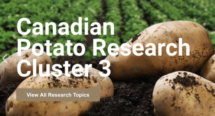 Canadian Potato Council research site