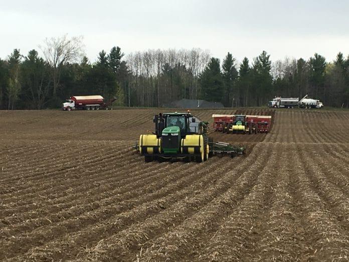 Potato planting at H. J. Vander Zaag Farms Ltd.