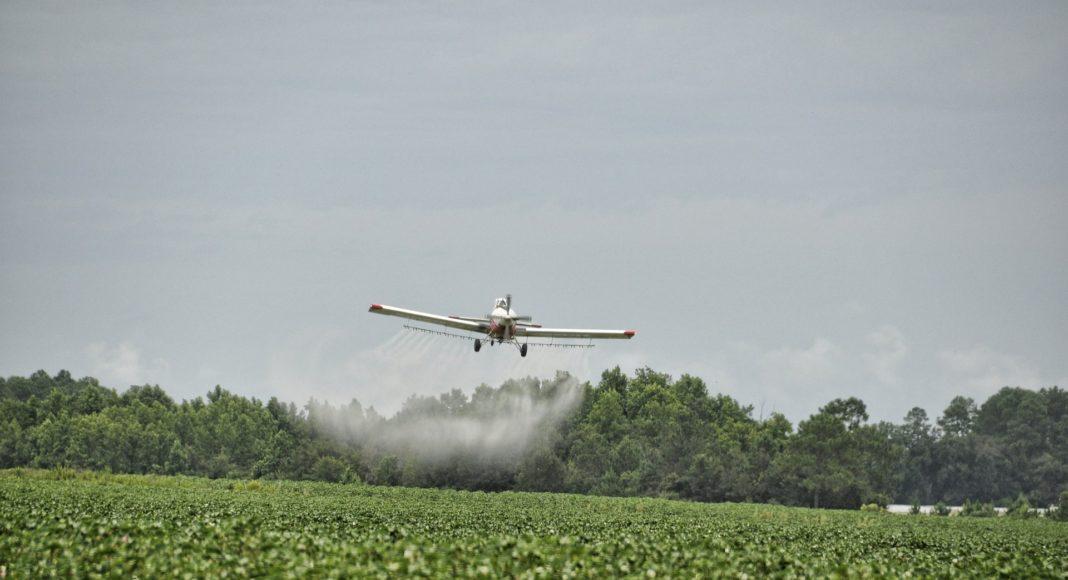 A plane sprays a crop