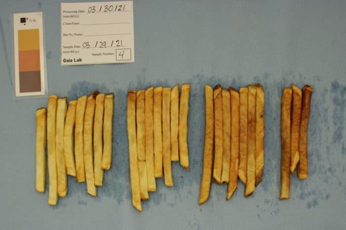 French fries sugar test