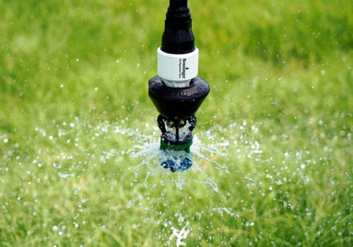 LDN Wide Spray Bubble